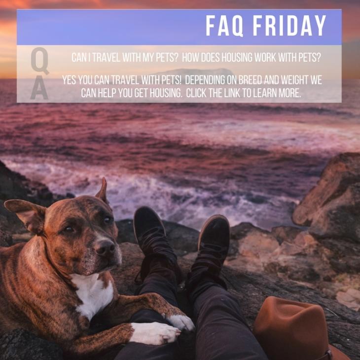 FAQ - Pets