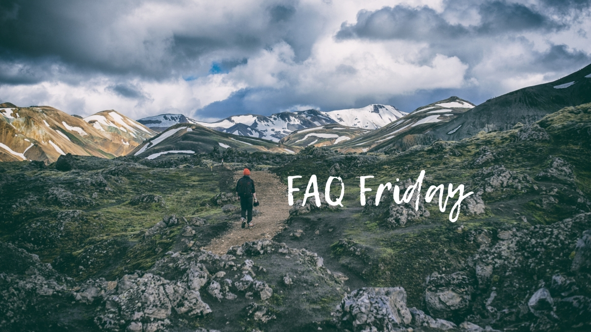 FAQ FRIDAY - What's the process?